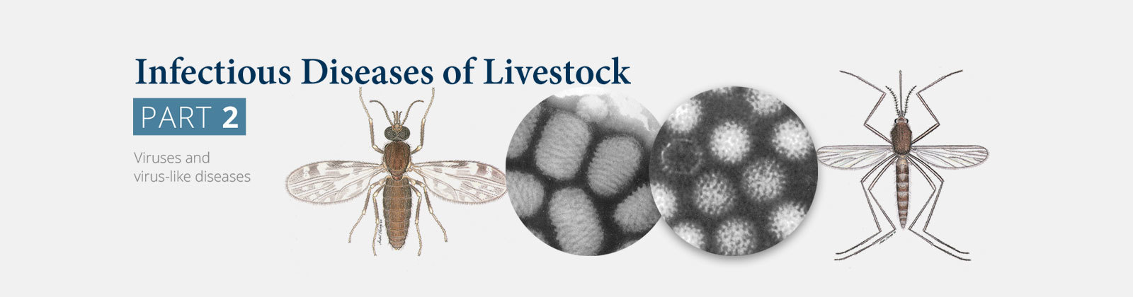 Infectious Diseases of Livestock